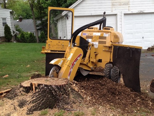 Affordable stump removal